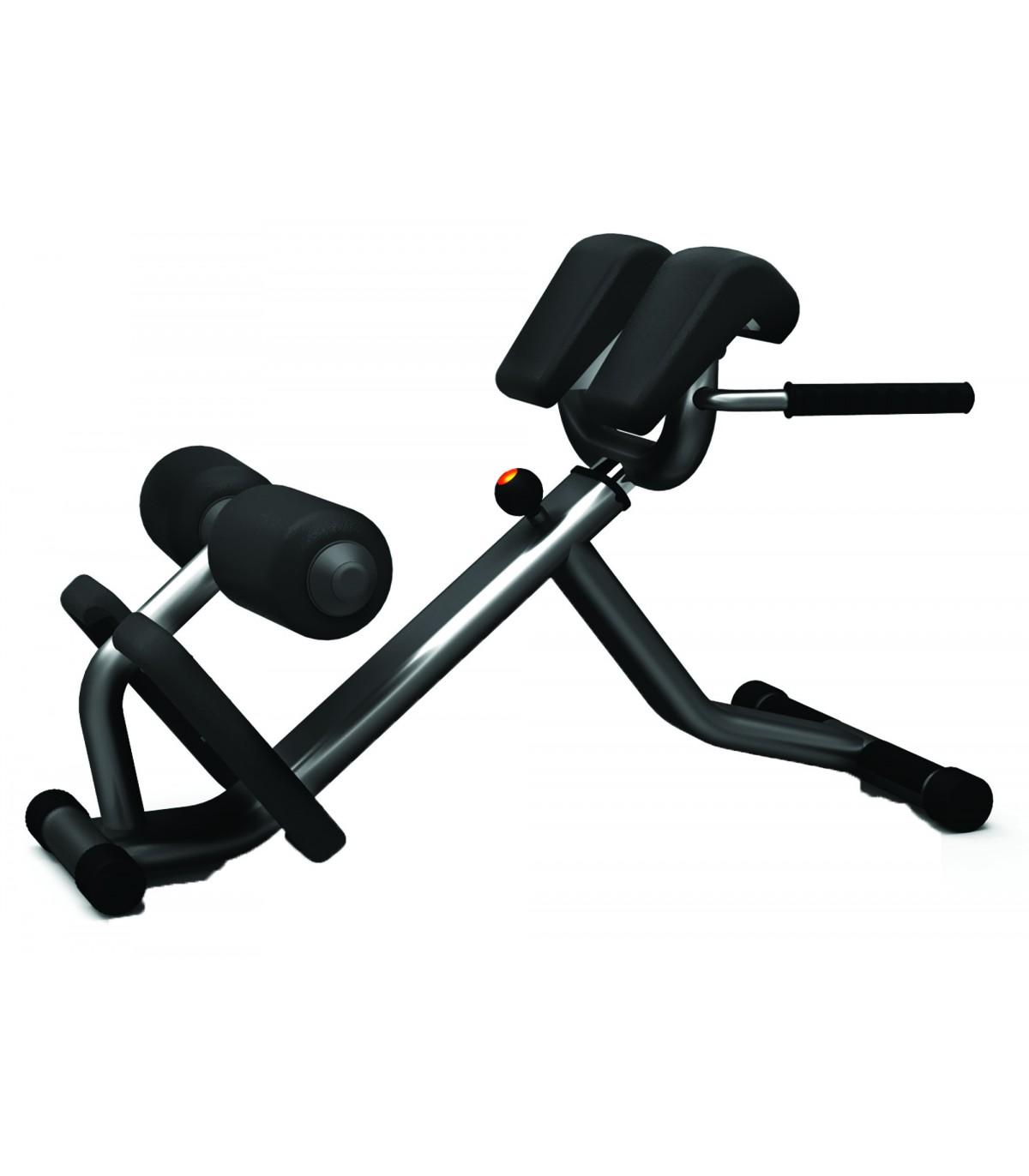 Banc De Musculation Professionnel Lombaires Care Fitness