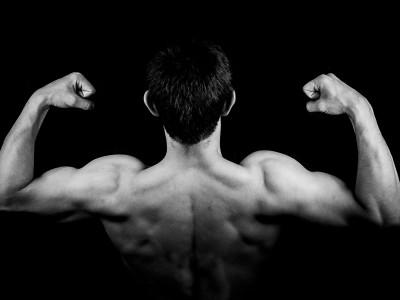 A quoi sert un rameur ? Quels muscles permet-il de renforcer ?